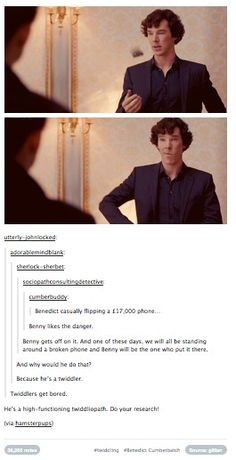 Hahahaha!!! This is why I love this Fandom. :) // Agreed! A high functioning twiddlepath! xD