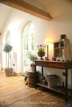 topiaries, I love this room