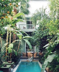 zwembad voor een stadstuin Patio Tropical, Tropical Landscaping, Backyard Landscaping, Landscaping Ideas, Small Backyard Patio, Backyard Patio Designs, Riads In Marrakech, Kleiner Pool Design, Small Pool Design