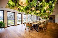 Vítejte   Herbarium Boutique Hotel Flora, Conference Room, Boutique, Home Decor, Decoration Home, Room Decor, Plants, Home Interior Design, Boutiques