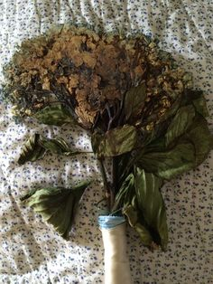 Dried one of my bridesmaids bouquets to put in my scrapbook. Thoughtful. Dats how I roll.