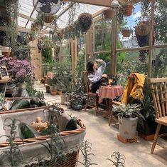 Coffee Flower, E Room, Scenery Background, Korean Aesthetic, Relaxing Day, Anime Scenery, Aesthetic Backgrounds, Aesthetic Pictures, Cool Pictures