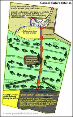 Cattle ranch business plan