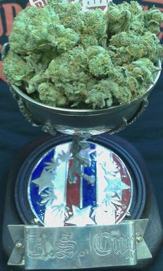 Veganic Girl Scout Cookies won top U.S. strain at the Denver Cup