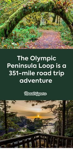 The Olympic Peninsula, right outside of Seattle, is home to Olympic National Park, endless beaches, mossy woodlands, lush waterfalls, and sweeping cliff views. #olympicpeninsula #roadtrip