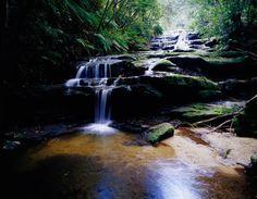 To see list: Leura Cascades, Blue Mountains, NSW, Australia