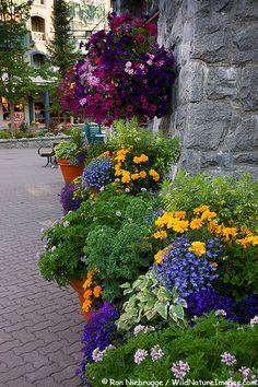 Whistler Village, Whistler, British Columbia, Canada