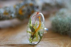 Hey, I found this really awesome Etsy listing at https://www.etsy.com/uk/listing/502618584/nature-resin-ring-terrarium-ring-magic