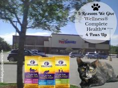 Melissa's Mochas, Mysteries and Meows: 5 Reasons We Give Wellness® Complete Health™ 4 Paws Up #HealthyMeetsHappy #ad @wellnesspetfood @petsmartcorp