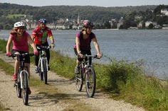 Et si ce week-end on enfourchait le vélo pour une petite sortie sportive ou en famille sur l'un des nombreux parcours qui vous sont proposés. Pour en savoir plus, n'hésitez pas à cliquer sur le lien ci-dessous. http://www.tourismecauxseine.com/loisir/randonnees-vtt-vue-densemble/