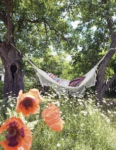 Summer garden, hammock & trees beautiful for a piece of me time with a book of poetry....
