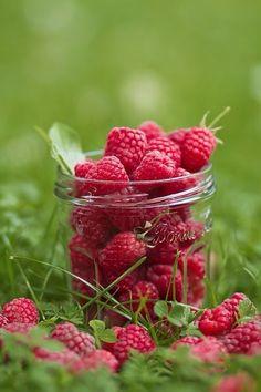 Juicy, freshly picked raspberries:)