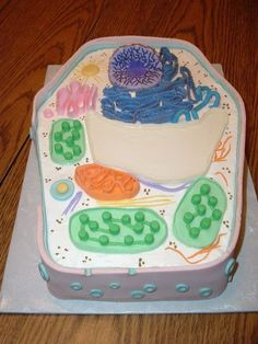 Picture of Plant Cell Cake