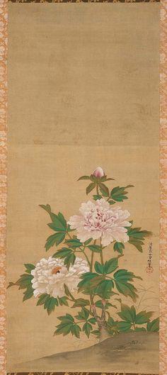 Peony (hanging scroll; ink and colour on silk) - Kiyohara Yukinobu (1643-1682)
