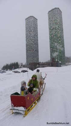 Free & Easy Hokkaido Winter Trip Planning 16