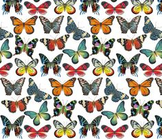 Butterfly Paintings fabric by Angelaanderson.  Wouldn't this be gorgeous on a bright picnic quilt?