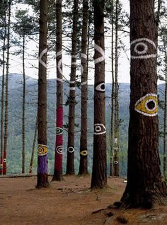 "The Forest of Oma, Basque Country | Spain       The forest of Oma, one of Basque artist Agustín Ibarrola's best known works, is an example of ""land art"", a creative trend that first appeared in the 1960s and which seeks to take art to nature and use the countryside as the artist's frame, support and medium.       Source: travelingcolors"