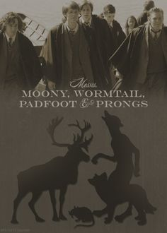 The Marauders. I was reading The prisoner of Azkaban today, and I noticed that the names of the Marauders are always written in the reverse order of their deaths! Lupin, Pettigrew, Sirius, and James! I adore finding little things like this! <3