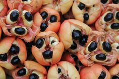 Jamaica's national fruit - Ackee