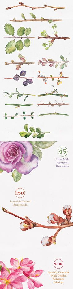 Flowers painting watercolor leaves ideas for 2019 Watercolor Water, Watercolor Leaves, Watercolour Painting, Painting & Drawing, Watercolor Ideas, Illustration Au Crayon, Watercolor Illustration, Plant Drawing, Drawing Flowers
