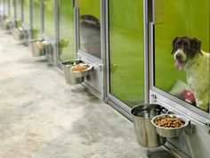 T-Kennel: Modular Kennel Systems -- Love the rotating bowls. Would want bowls to be easily removable for sanitization