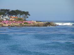pacific ocean pictures in california | Pacific Grove California Mar Océano El Agua Cielo | Guauquecosas