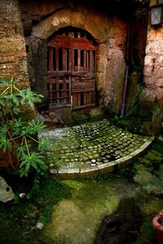 Ancient Garden Door, Calcata, Italy