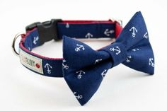 Great nautical bow tie dog collar