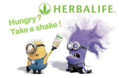 Herbalife: Herbal-minions