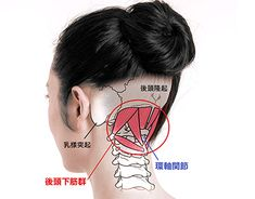 Pin on 健康 Qigong, Gua Sha Facial, Acupressure Therapy, Spine Health, Neck And Shoulder Pain, Face Yoga, Body Anatomy, Muscle Training, Holistic Medicine
