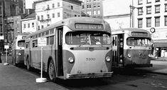 Ptc phila c 41 mack buses pinterest for Queen city motors cumberland md