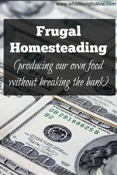 Frugal Homesteading | Whistle Pig Hollow