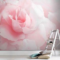 Pink Rose Mural | Graham & Brown UK