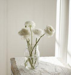 #white and wonderful...
