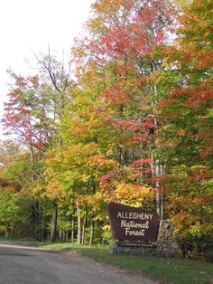 The Allegheny National Forest, Pennsylvania I have been through alot of places in PA, but not sure if I have been.