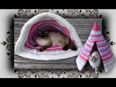 DIY for CATs by Hohentwielbirmas - YouTube