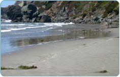 Dillon Beach Resort - Beach