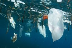 Despite protests and bans across the globe, much more plastic is on the horizon because oil companies need a new reason for being. Ocean Pollution, Plastic Pollution, Oceans Of The World, Countries Of The World, Energy Pictures, Outside Magazine, Plastic Waste, Plastic Bags, Ocean Photography