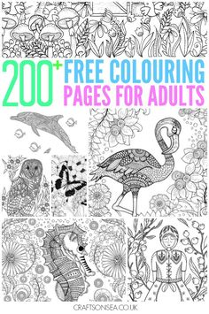 Free Colouring Pages For Adults - hundreds of detailed colouring pages for adults and tweens plus a few for kids too!