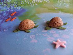 Dzień Żółwi – minipakiet edukacyjny