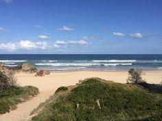 House Sitters Needed Oct 14, 2017 Short Term Port Macquarie NSW Australia