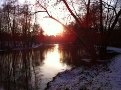 ☀️ #nofilter #sun #sunshine #river #park #forest #winter #snow #reflection #warm #poland