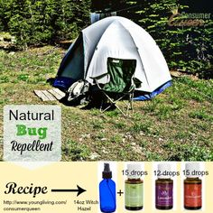 DIY All Natural Bug Repellent Recipe #DIY #AllNatural #Bugs