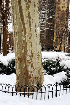 Philadelphia in the snow - Philly with a Fjallraven photography blog