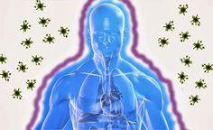 Remediosnatural.com: Remedios Naturales para combatir las Defensas Bajas