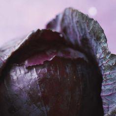 Embeurrée de chou rouge | Ricardo Ricardo Recipe, White Wine Vinegar, Red Cabbage, Good Food, Butter, Vegetables, Recipes, Peeps, Projects