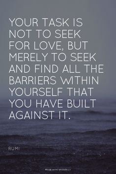 Your task is not to seek for love, but merely to seek and find all the barriers within yourself that you have built against it. <br><br> - Rumi
