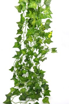 Bird Fiy 24 English Ivy Silk Greenery Artificial Plants for Wedding Party Holiday Decorations, 156-Feet *** Want additional info? Click on the image.