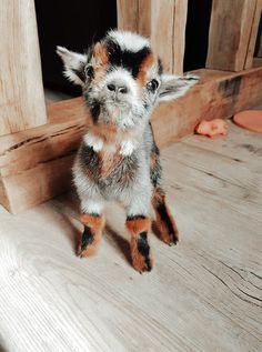 Cute Baby Cow, Baby Animals Super Cute, Cute Wild Animals, Cute Little Animals, Cute Funny Animals, Animals Beautiful, Funny Dogs, Baby Farm Animals, Baby Animals Pictures