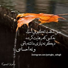www.facebook.com/PatoGeOshaGh Persian Poetry, Persian Quotes, Bear Wallpaper, Favorite Quotes, Facebook, Star, Feelings, Words, Hair Styles